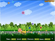 Click to Play Flower Catcher